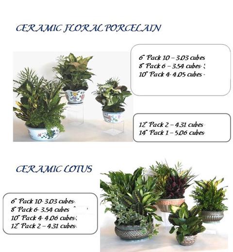 Ceramic Floral Porcelain & Lotus