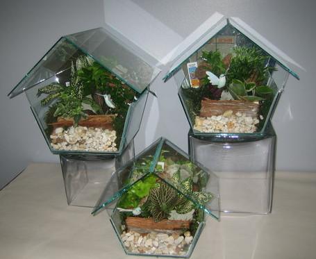 Terrarium Birdhouse